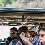 big 5 hluhluwe clients on safari