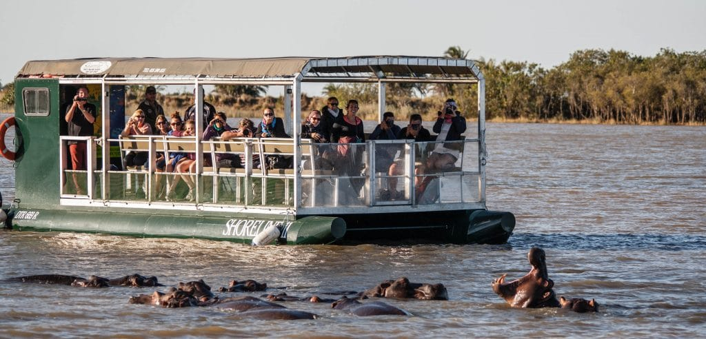 Hippo Amp Croc Boat Cruise St Lucia South Africa St Lucia