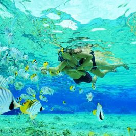 Snorkeling Cape Vidal South Africa