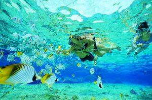 Vidal snorkeling