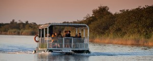 hippo & croc boat cruise special