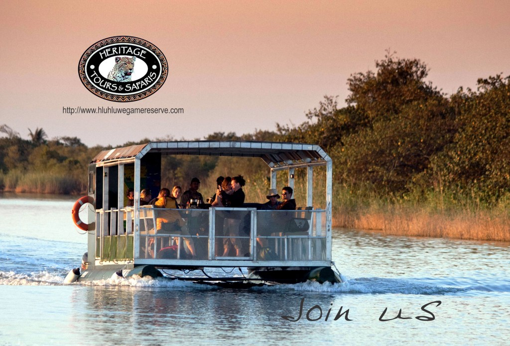 South africa tours and activities