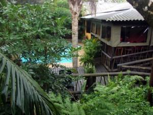 umlilo lodge tropical garden