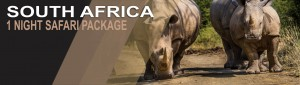 1 Night wildlife Safari Package South Africa