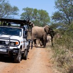 2 day / 3 night safari south africa package