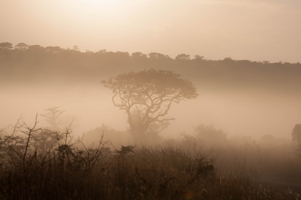 3 day safari south africa