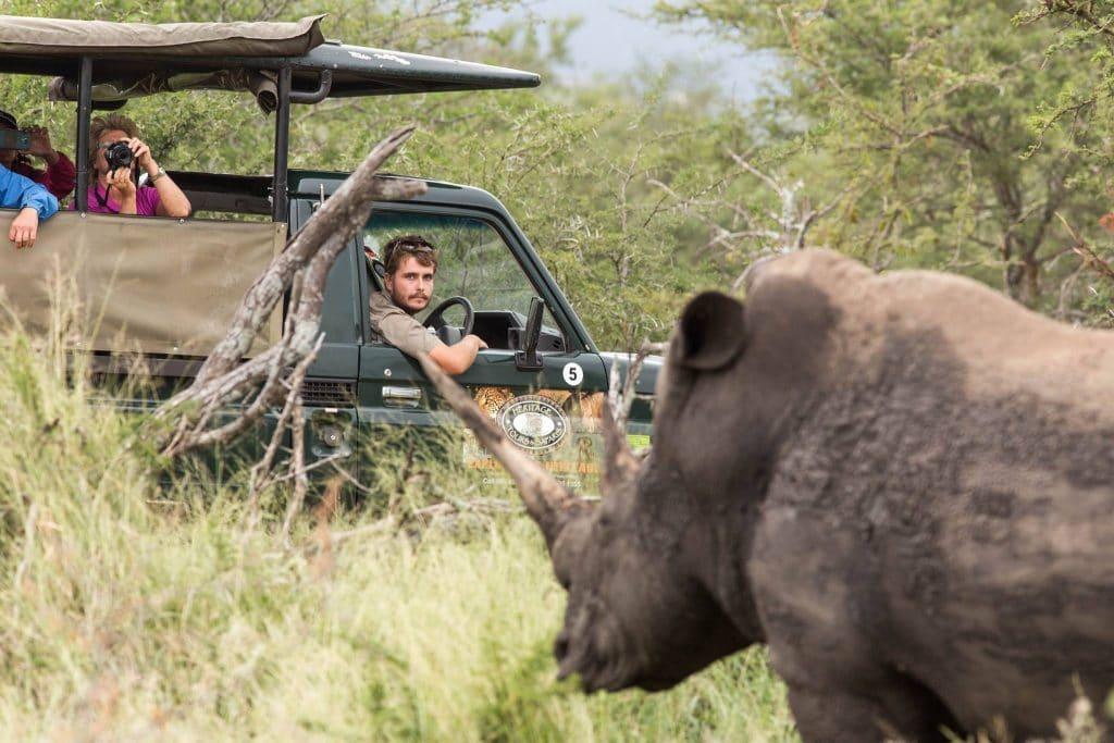 hluhluwe imfolozi park full day safari