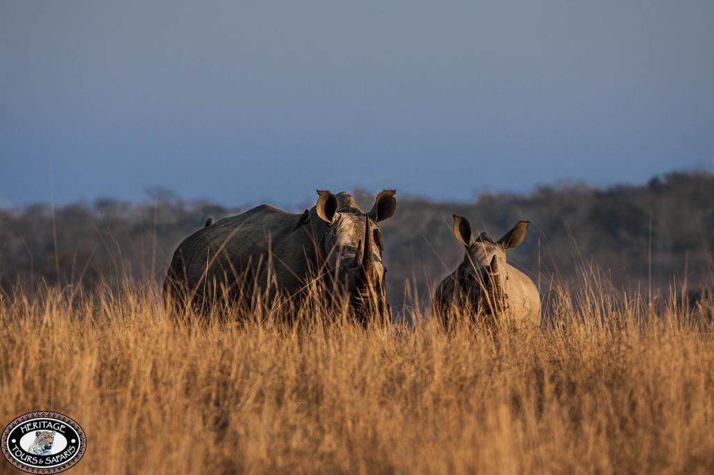 st lucia kwazulu natal south africa