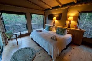 accommodation coastal forest
