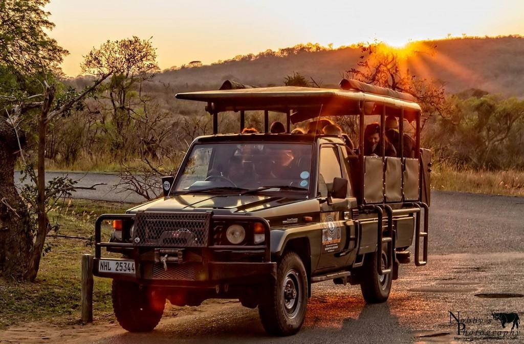 3 night safari package day 2 big 5 safari hluhluwe