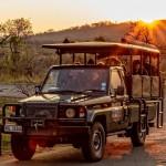 full day hluhluwe umfolozi game reserve safari