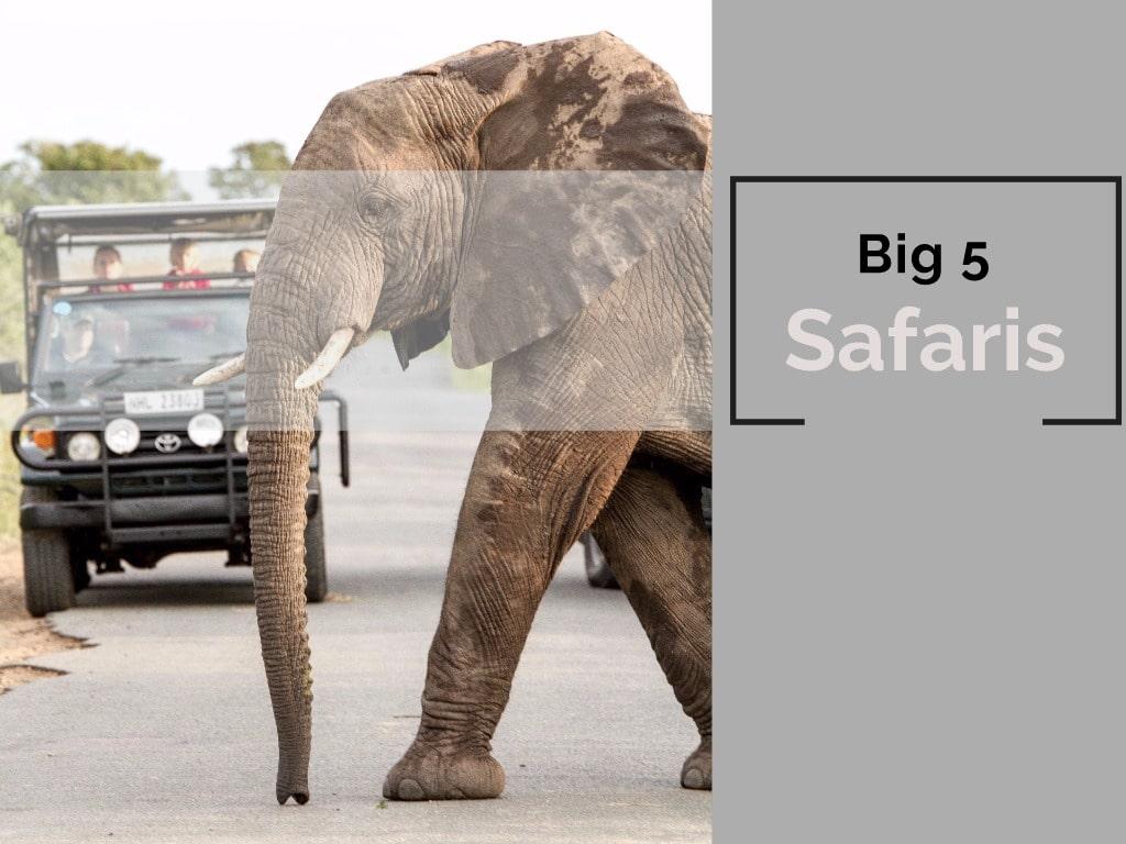 st lucia hluhluwe big 5 safaris