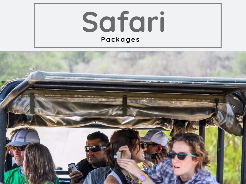 st lucia south africa overnight safari packages
