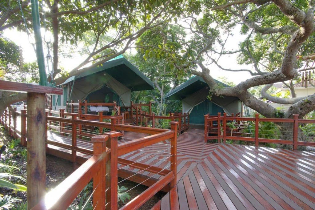 monzi backpackers accommodation kwazulu natal south africa