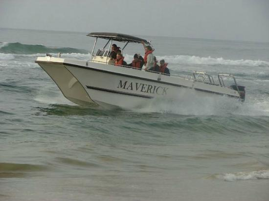 maverick-fishing-charters st lucia south africa