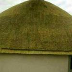 veyane zulu cultural village st lucia