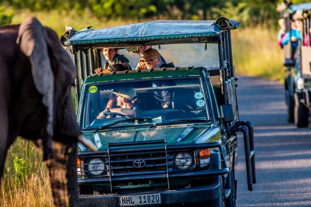 full day hluhluwe-imfolozi park big 5 safari