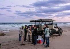 isimangaliso wetland park turtle tours